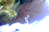 May 4, 2010 MODIS Image